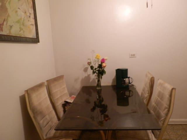 condominium near Manhattan, free gas and electric