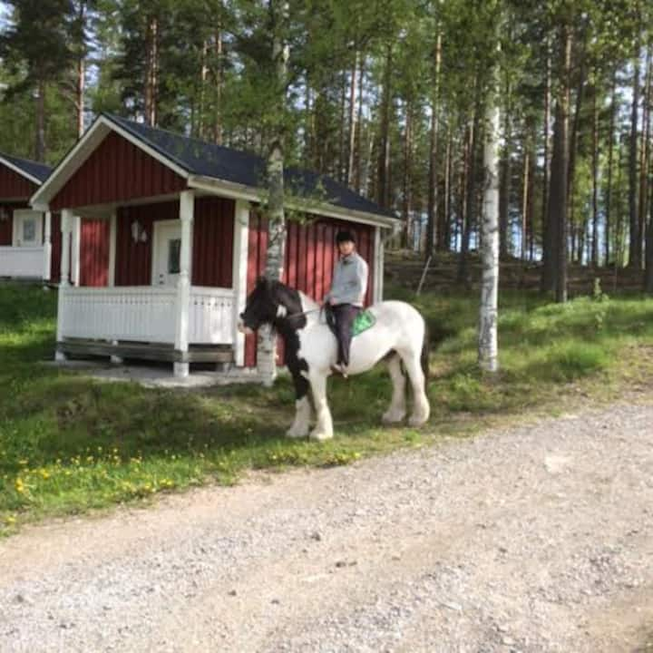 Grindhammaren B & B och  rekreation i Ramsberg