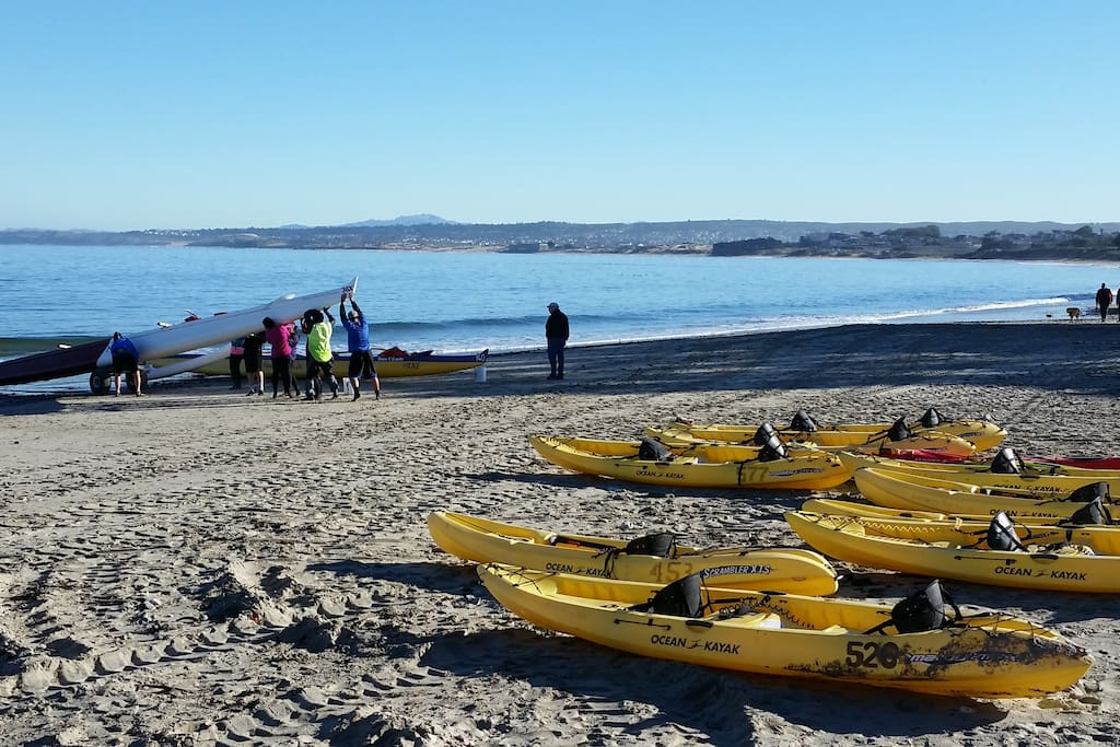 Kayaking is available just minutes away down the Monterey Beach