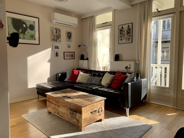 Comfortable apartment in de Pijp district (airco)