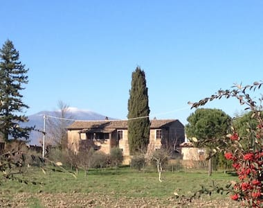 1 Bed Apt.On Southern Tuscan border - Proceno - Apartment