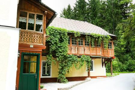 Ferienhaus Loitzl - Bad Mitterndorf