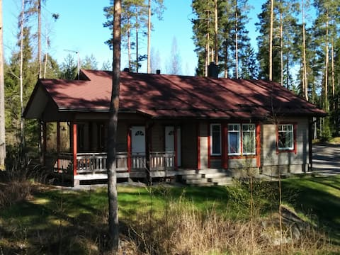 Cottage w/ brilliant lakeview - Fishing,Skiing etc