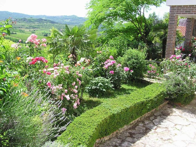 Comfortable apartment with garden - Motovun - Apartemen