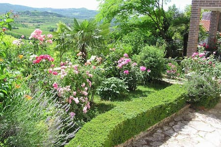 Comfortable apartment with garden - Motovun