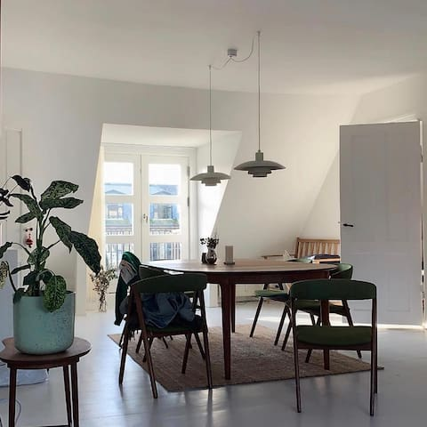 Wonderful Frederiksberg apartment with great view