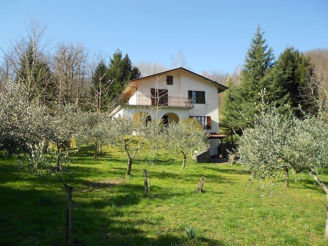 Casa Muccini Jo - Tenerano - Leilighet