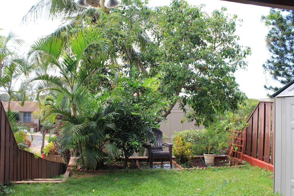 Terraced back yard