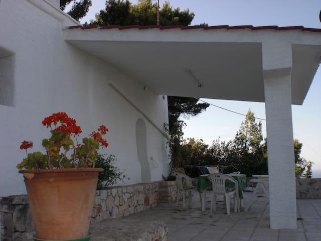 Summer House in Selva di Fasano - Selva di Fasano - House