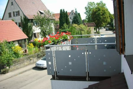 Whole apartment with large sun terr - Pliezhausen - Apartamento