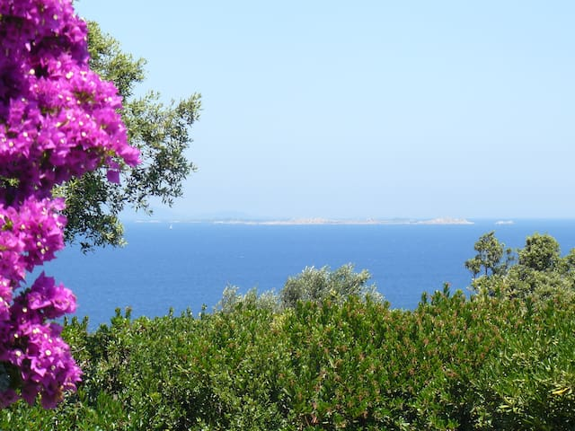 Holiday home Villa with privatepool - Santa Teresa Gallura - Villa