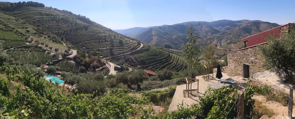 Quinta das Fontainhas - Douro Valley - Douro
