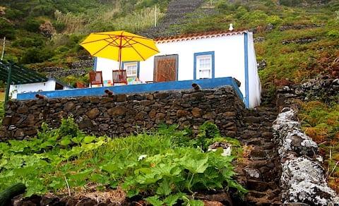 Χαλαρώστε στο σπίτι του Fajãzinha