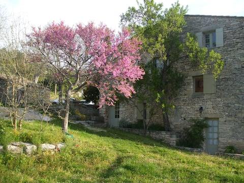 Provensk hus Luberon - LA SPARAGOULE -