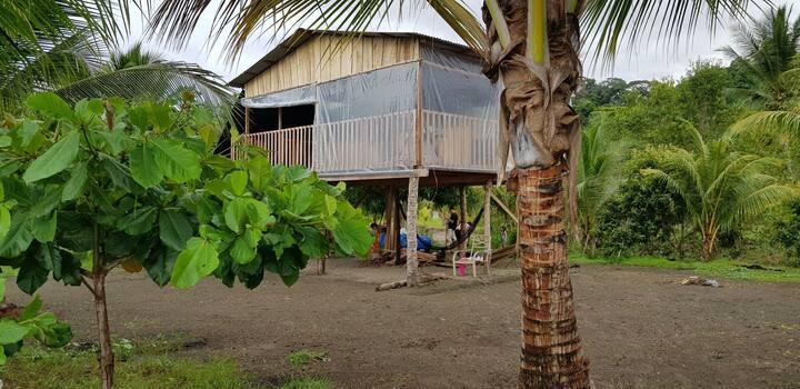 Bungalows, Vista Cocodrilo