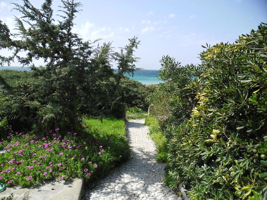 Giardino con accesso alla spiaggia
