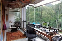 50 mts High inside the forest view