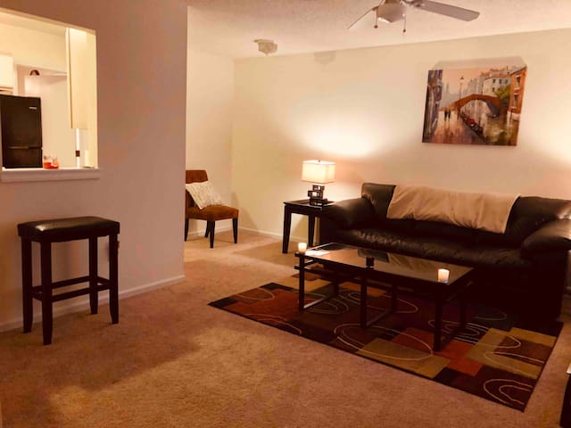 Entire Apartment minutes from Vidant & ECU