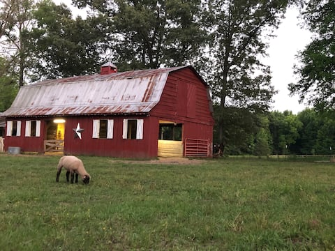 Peaceful Farm Stay At Lofton Acres