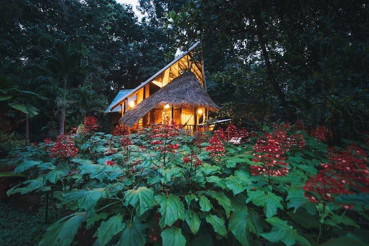 Beach House at Tree House Lodge