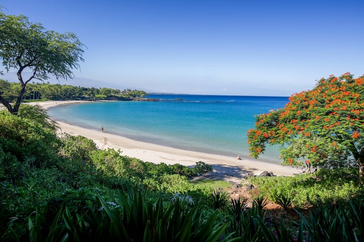 ❤️PiH❤️ Majestic Ocean Villa★ Stunning Mauna Kea
