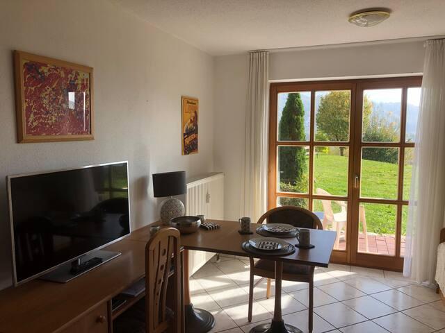 Ruhiges Appartement mit Gartenzugang & Donaublick