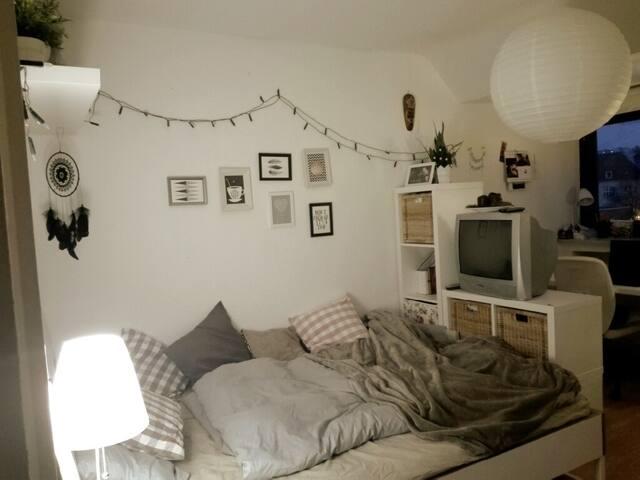 Möbliertes Zimmer in Siegener WG