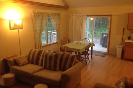 Pet friendly cottage at Higgins Lake - Roscommon
