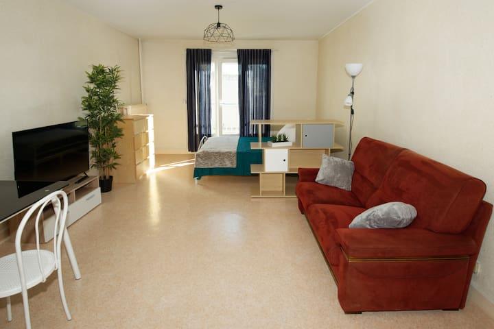 Appartement T1 Tout Confort proche   IUT FAC OIEAU