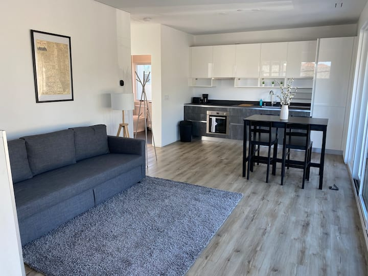 Modern One Bedroom apartment in Redwood City