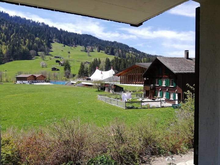 Gstaad Luxurious flat with terrace& stunning views