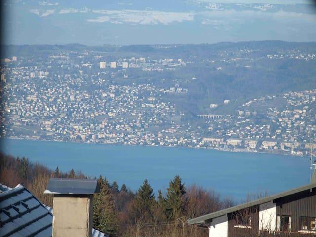 Vue panoramique sur lac Léman / Coeur Station