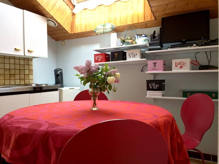 Apartment with 2 bedrooms in Rochesson, with wonderful mountain view, terrace and WiFi - 6 km from the slopes