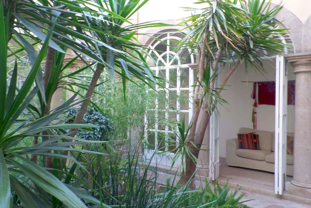 Tranquil Bamboo courtyard