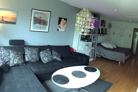 A Nice room in a apartment in the city,Gothenburg - Gotemburgo