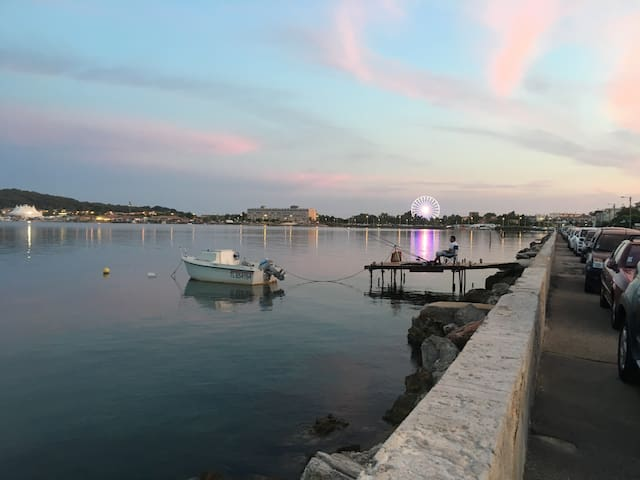La Seyne-sur-Mer : Rez de Villa avec vue mer