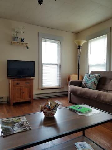 Living room with lush inner spring Full mattress futon
