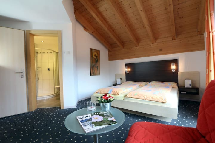 Hotel Feehof  Double room with extra bed