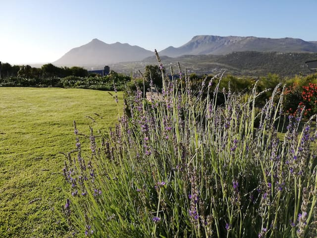 Beautiful indigenous garden with spectacular mountain and sea views.
