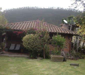 Cabañas Susana - Cabin