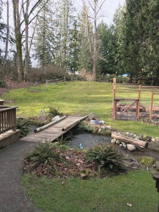 Backyard + Trail access to Gailbrath Mtn