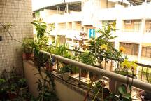 Our balcony looks like this