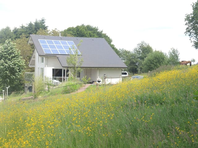 Gîtes ruraux (Varsberg, Carling, Metz..)262