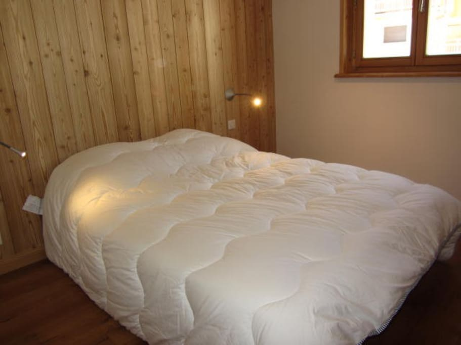 Un grand lit double dans une chambre avec placards