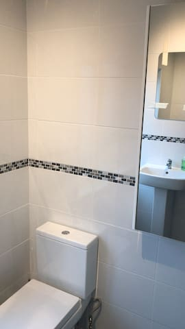 Brand new bathroom throughout