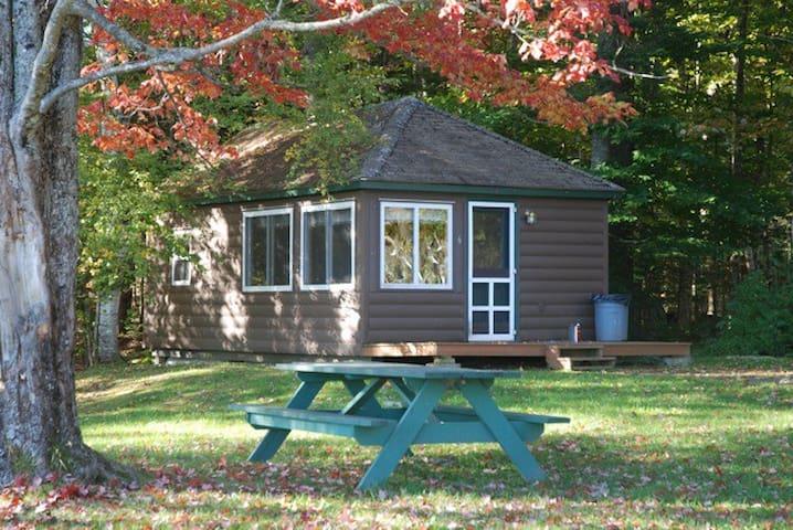 Lake Moxie Cabin Rental