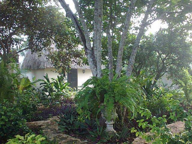 Mayan Palapa Casita - 10km north of Izamal, Yucatan - Bed & Breakfast