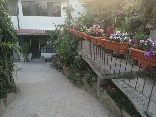 Apartamento Rodeado de Naturaleza