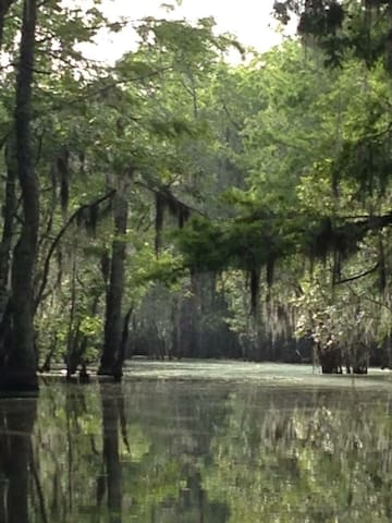 Serenity on the Swamp - Slidell