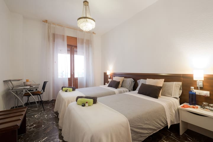 Cathedral Suite with private bathroom + breakfast - Granada